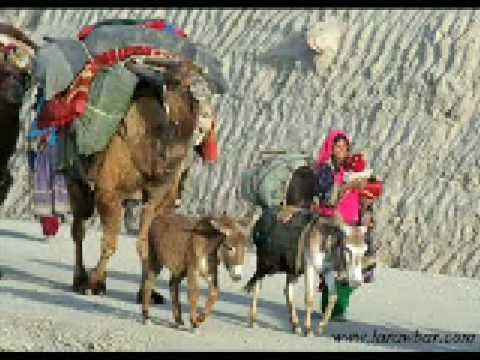 Attan Afghan Pashto Song Qandi Kochey video