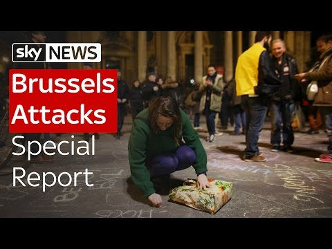 Brussels Attacks: Special Report