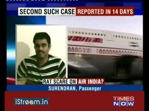 Rats aboard Air India - iStreamNews 090926