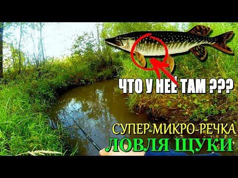 Вот это да!!! ЩУКА С СЮРПРИЗОМ ВНУТРИ! ЛУЧШАЯ рыбалка на МИКРО-РЕЧКЕ в этом сезоне!