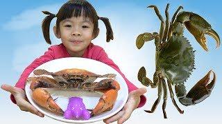 Tân An Và Tôn Ngộ Không Đi Câu Tôm Cua Cá Và Làm Món Cua Nướng ❤ AnAn ToysReview TV ❤