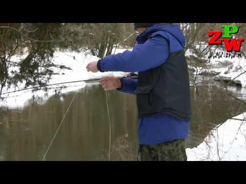 Troć Iny 2010 Koła PZW Big Fish Szczecin