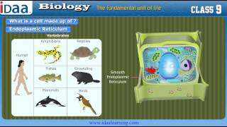 What is cell – Biology  CBSE Class 9