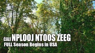 SUAB HMONG TRAVEL:   09/23/2017 Fall season begins in USA - Caij nplooj ntoos pib zeeg nyob meskas