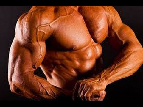 Build Muscle Mass After