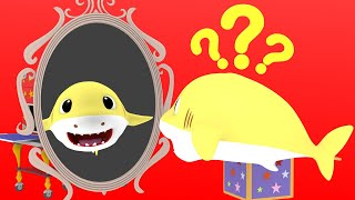 The Shark Lost his Fine Song with Baby Shark   Baby Shark Family Song Nursery Rhymes