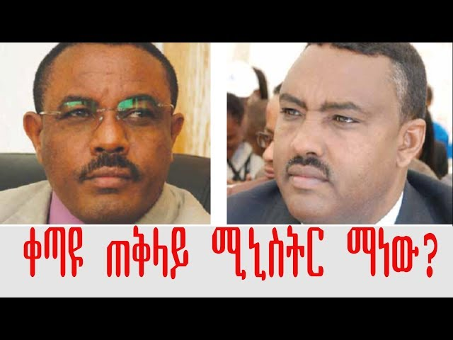 Who Is Going To Be Ethiopia's Next Prime Minister?