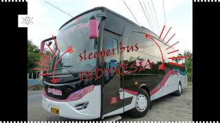 SLEEPER BUS INDONESIA VS INDIA 2016 | BAGUS MANA?|