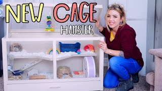My New Hamster Cage Setup | New Age Pet Ecoflex Small Animal Hutch