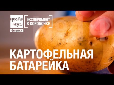 №14 - КАРТОФЕЛЬНАЯ БАТАРЕЙКА