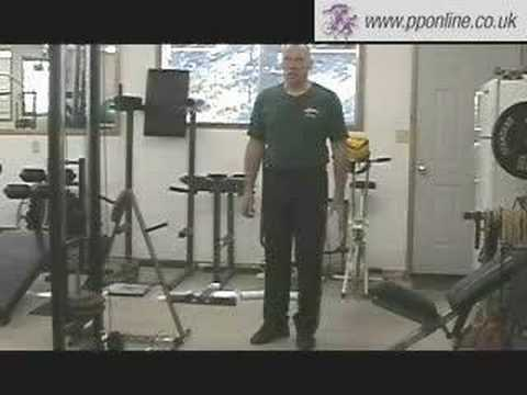 Sports Training - Weight Training - Low Cable Row Image 1