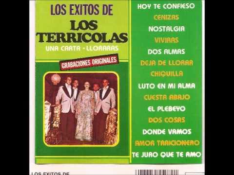 Los Terricolas - Deja De Lorrar Chiquilla