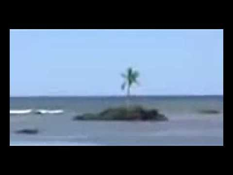 Solomon Islands Tsunami [Santa Cruz] [shot near house] after Magnitude 8.0 Earthquake (ORIGINAL)