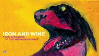 Watch Iron  Wine Wolves song Of The Shepherds Dog video