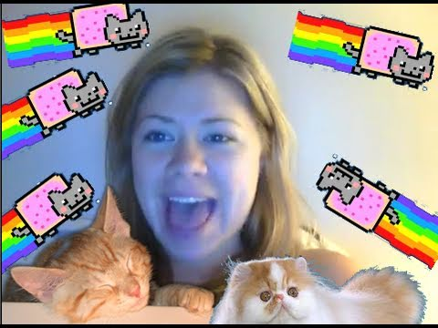 Thumbnail of video Songify This - CAN'T HUG EVERY CAT -- a song about loving cats