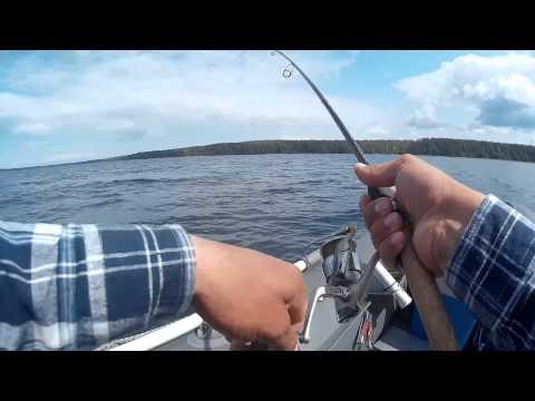 рыбалка в сысерть щука