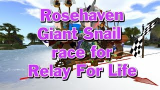 Giant snail race 517 18 May 26 RFL Rosehaven race 02