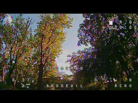 RedDevil Margit-sziget fára parkolás 2019. augusztus 9.