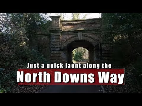 A Quick Jaunt Down the North Downs Way