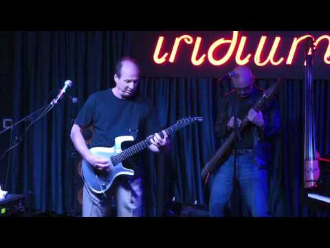 Adrian Belew and Tony Levin Duo At Iridium