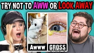 Download Lagu College Kids React to TRY NOT TO LOOK AWAY or AWW MEGA CHALLENGE Gratis STAFABAND