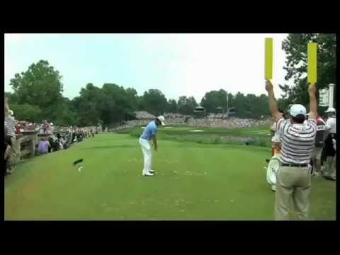 Rory McIlroy 2011 Dream Year