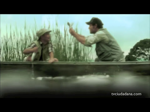 CAMPAÑA TOXICA DE GREENPEACE MEXICO