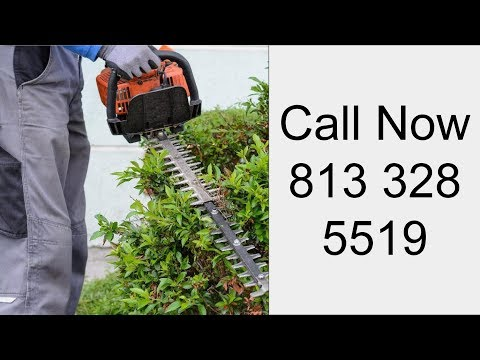 Professional Lawn Care Services Holiday FL - Call at - 813-328-5519