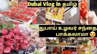 துபாய் உழவர் சந்தை பாக்கலாம் வாங்க/  Dubai Vegetable Market/ Co-operative Rate/ Abdullah Al Kattal