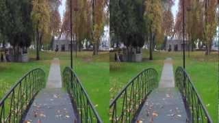 DXG-DVX5F9 3D 1080P| 3D Sample Video (LG CINEMA 3D)