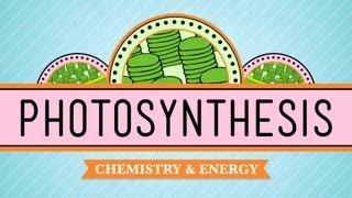 Download Lagu Photosynthesis: Crash Course Biology #8 Gratis STAFABAND