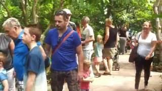 Butterfly Garden @ Amsterdam Artis Zoo