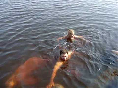Amazon River Dolphin Swim - Rio Negro