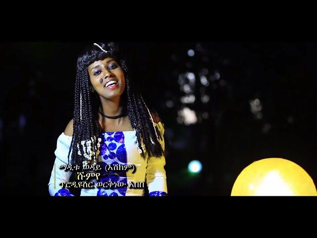 Ethiopian Music : Maditu Weday (Shumeye) ማዲቱ ወዳይ (ሹምየ) - New Ethiopian Music 2019(Official Video) thumbnail