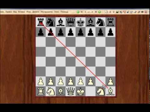 Видеоуроки шахмат - видео