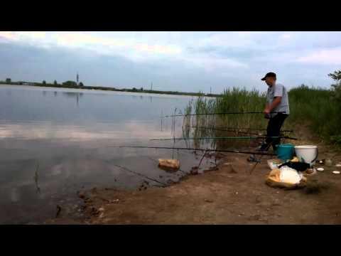 рыбалка в самаре и самарской области правила