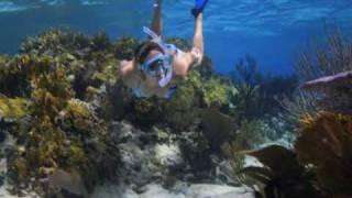 Snorkeling Southwest Reef, New Providence, Bahamas