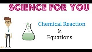 Basics Of  Chemical Reactions & Equations
