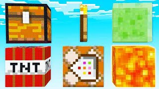 WHAT'S INSIDE THESE GIANT MINECRAFT BLOCKS?