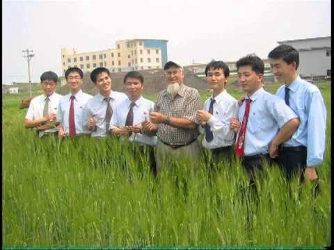 University teaching in North Korea