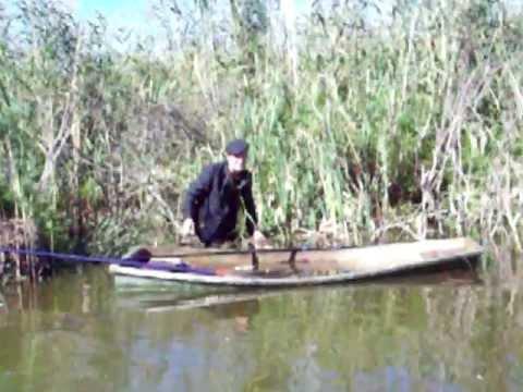морж на рыбалке пусть говорят