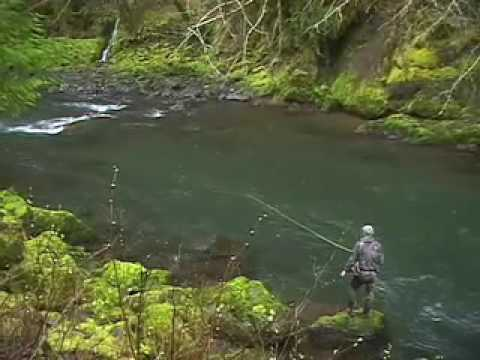 Award Winning Spirit River Studios - Oregon Coast Steelhead