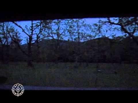 Caccia da appostamento videolike for Capanno invisibile