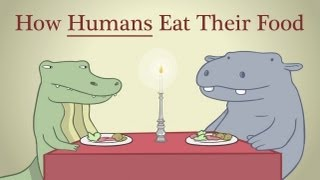 How Humans Eat Their Food