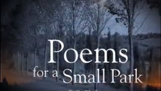 """Poems for a Small Park: """"There's something happening here"""""""