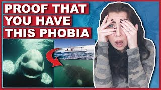 Photos That PROVE You Have Thalassophobia