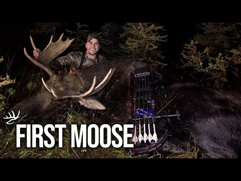 Bowhunting Moose in Canada - Heartland Bowhunter TV Show