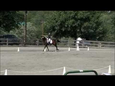 Silva Martin winning on London Venture at Heavenly Waters Dressage Video