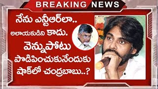 Pawan Kalyan Sensational Comments on Cm Chandrababu Naidu | Praja Porata Yatra | Top Telugu Mdedia