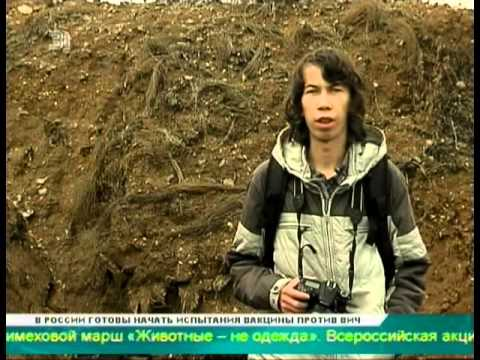 Открытые гробы и разбросанные человеческие останки  Жители Карабаша обнаружили старинное кладбище